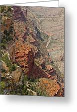 Colorado River In The Grand Canyon Greeting Card