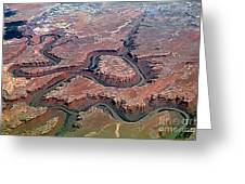 Colorado River Meanders Through Canyonlands National Park In Uta Greeting Card