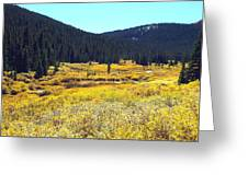 Colorado River Valley In Fall Greeting Card