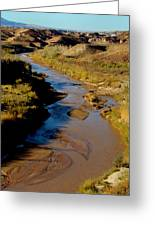 Colorado River View Greeting Card by Eva Kato