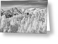 Colorado Rocky Mountain Autumn Beauty Bw Greeting Card
