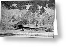 Colorado Rocky Mountain Barn Bw Greeting Card