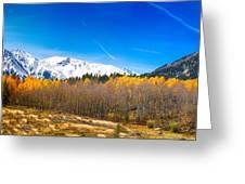 Colorado Rocky Mountain Independence Pass Autumn Pano 1 Greeting Card