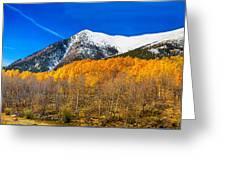 Colorado Rocky Mountain Independence Pass Autumn Panorama Greeting Card