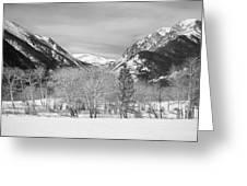 Colorado Rocky Mountain Winter Horseshoe Park Bw Greeting Card