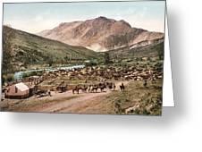 Colorado Roundup 1897 Greeting Card