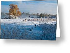 Colorado Waning Autumn And Approaching Winter Greeting Card by Cascade Colors