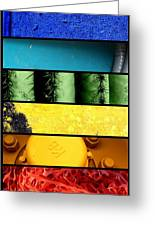 Coloration Greeting Card