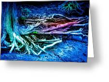 Colored Forest Greeting Card by John Ressler