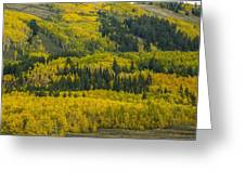 Colored Hillside Greeting Card