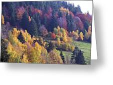 Colored Landscape Greeting Card