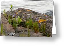 Colored Rocks Greeting Card