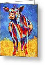 Colorful Angus Cow Greeting Card