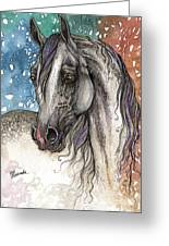 Colorful Arabian Horse  Greeting Card