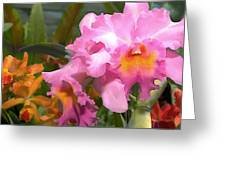 Colorful Assorted Cattleya Orchids Greeting Card