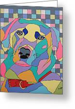 Colorful Dog Bear Greeting Card
