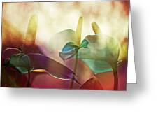 Colorful Calla Greeting Card by Eiwy Ahlund