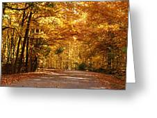 Colorful Canopy Greeting Card by Sandy Keeton