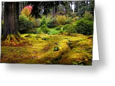 Colorful Carpet Of Moss In Benmore Botanical Garden Greeting Card