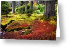 Colorful Carpet Of Moss In Benmore Botanical Garden. Scotland Greeting Card