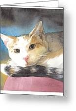 Colorful Cat Watercolor Portrait Greeting Card