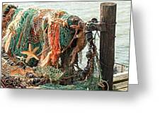 Colorful Catch - Starfish In Fishing Nets Greeting Card
