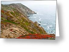 Colorful Cliffs At Point Reyes Greeting Card