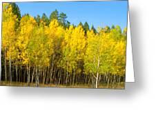 Colorful Colorado 2 Greeting Card