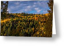 Colorful Colorado 2014 Greeting Card