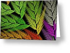 Colorful Feather Fern - Abstract - Fractal Art - Square - 1 Tl Greeting Card