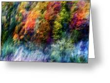 Colorful Forest Greeting Card