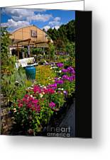 Colorful Greenhouse Greeting Card by Amy Cicconi