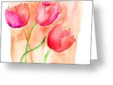 Colorful Illustration Of Red Tulips Flowers  Greeting Card
