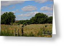 Colorful Kansas Country Pasture Greeting Card