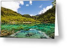 Colorful Lake At Jiuzhaigou China Greeting Card