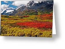Colorful Land - Alaska Greeting Card
