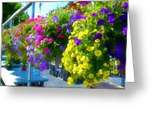 Colorful Large Hanging Flower Plants 1 Greeting Card
