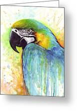 Macaw Painting Greeting Card