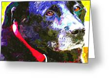 Colorful Old Dog Greeting Card