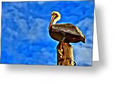 Colorful Pelican Greeting Card