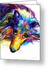 Colorful Sheltie Dog Portrait Greeting Card