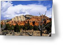 Colorful Southwest Greeting Card