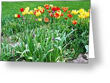 Colorful Spring Greeting Card