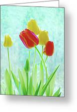 Colorful Spring Tulip Flowers Greeting Card