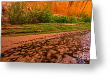 Colorful Streambed - Coyote Gulch - Utah Greeting Card