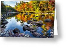 Colorful Trees Along The Swift River Greeting Card