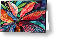 Colorful Tropical Leaves 2 Greeting Card