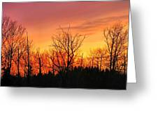 Colorful Winter Sunset Greeting Card