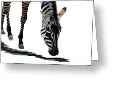 Colorful Zebra 2 Greeting Card
