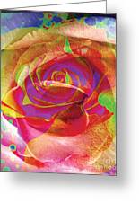 Colorfull Rose Greeting Card